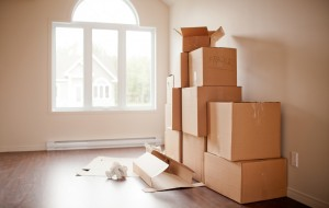 Moving Boxes 01